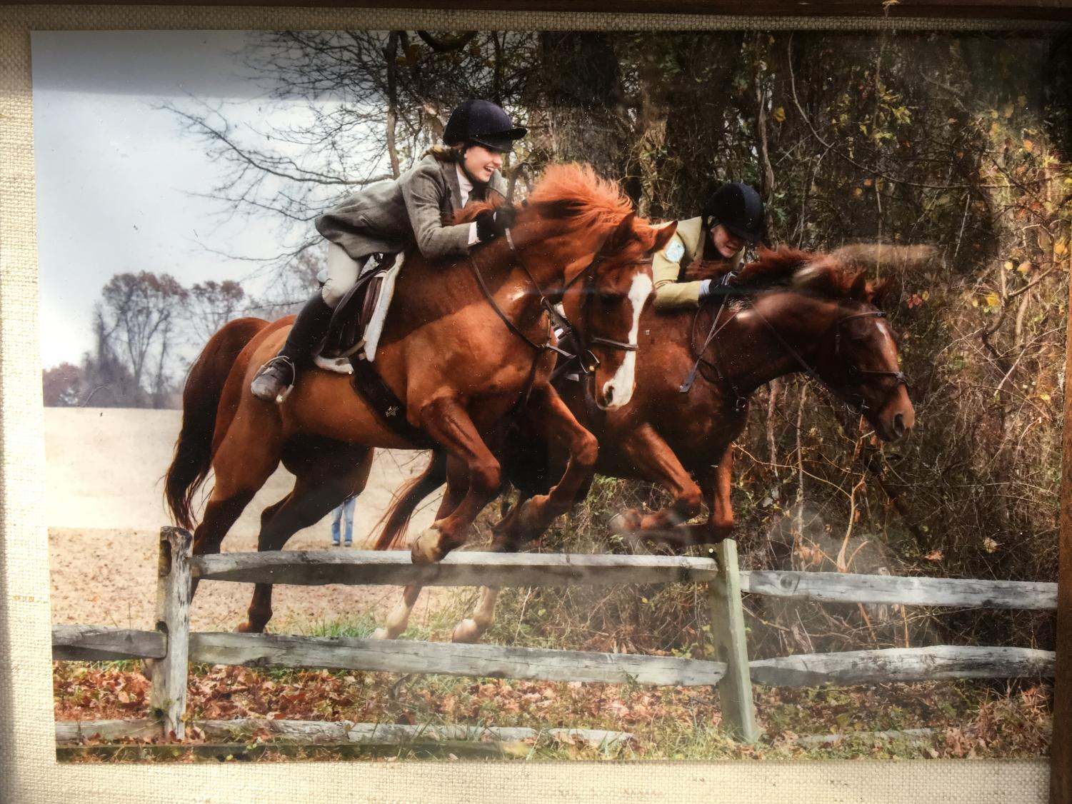 Hannah O'Brien ('19) jumps a fence while fox hunting with Mount Caramel Hunt Club.  She started fox hunting before she started show jumping.