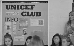 New branch of UNICEF is introduced