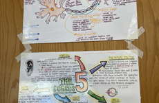 These are examples from students of their great note taking skills. Colors and bolded words are used in order to make words clear and easier to remember, use the methods in the photos for beneficial not taking.